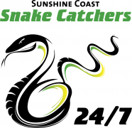 Sunshine Coast Snake Catchers 24/7